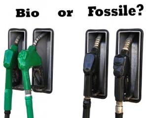Bio or fuel