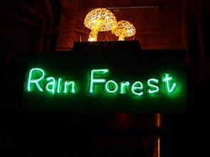 20110216 rainforest